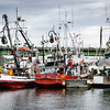 Fishing Boats, Fishermen's Terminal, Seattle, Washington