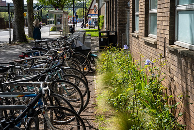 Cycle parking at Spike Island