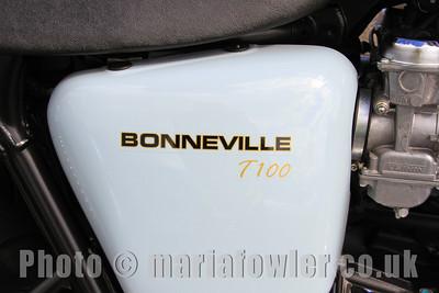Triumph Bonneville T100 motorcycle