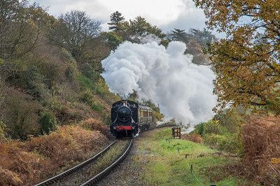 GWR 1500 class no. 1501 powers away from Bewdley