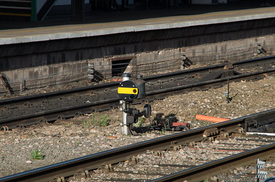 Black/yellow ground disc at Shrub Hill