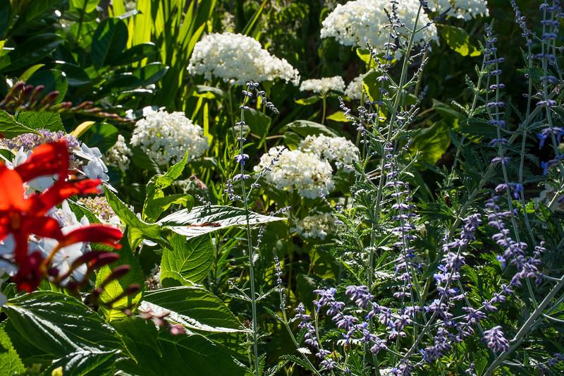 Floral arrangements at Arley station
