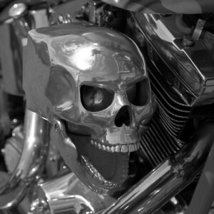 Decorative skull on a Harley