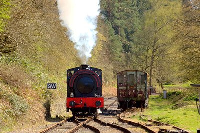 Wilbert at Parkend Station 004