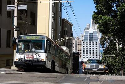 Transport; Bus;