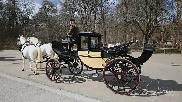 Transport; Carriage;