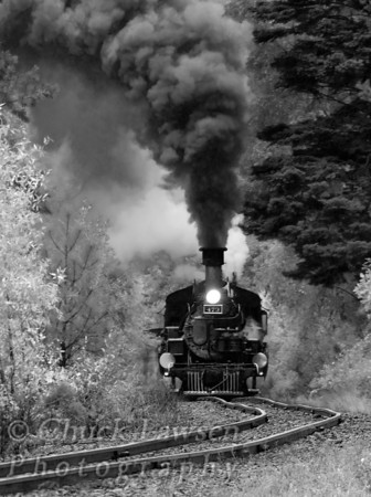DSRR, CO./Sep. Steam locomotive #473 chugs through the forest along the 46 mile journey from Durango to Silverton CO.
