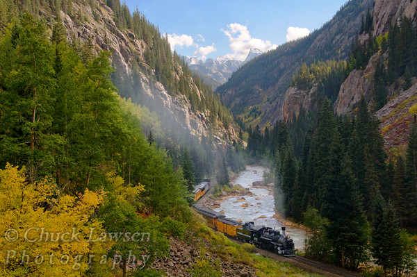 DSRR, CO./Sep. Steam locomotive #473 winds along beside the Animas River through a colorful mountainous valley on the journey to Silverton, CO. along the Durango & Silverton RR during autumn.