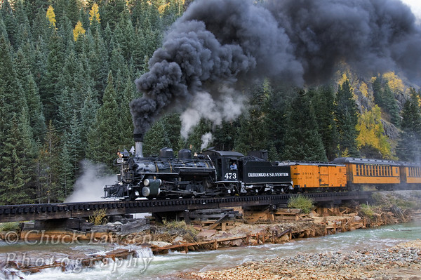 DSRR, CO./Sep. Steam locomotive #473 lumbers across a trestle that spans the Animas River near Silverton, CO. along the Durango & Silverton RR during autumn.