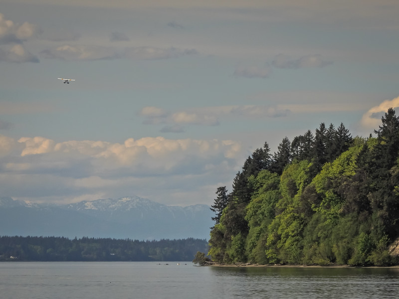 Seaplane going toward Priest Point Park Olympic Mtns in Background