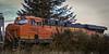 Grand Mound Train