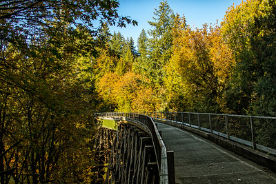 Sno Valley Trail Tokul Creek Bridge Fall Landscape 10-14-18