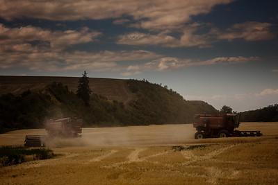Twin combines  harvesting wheat wide angle Walla Walla 7-22-16