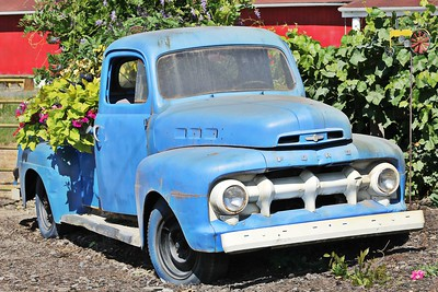 Recycled Blue Ford Pick Up Truck