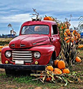 Red PickUp Truck and Pumpkins
