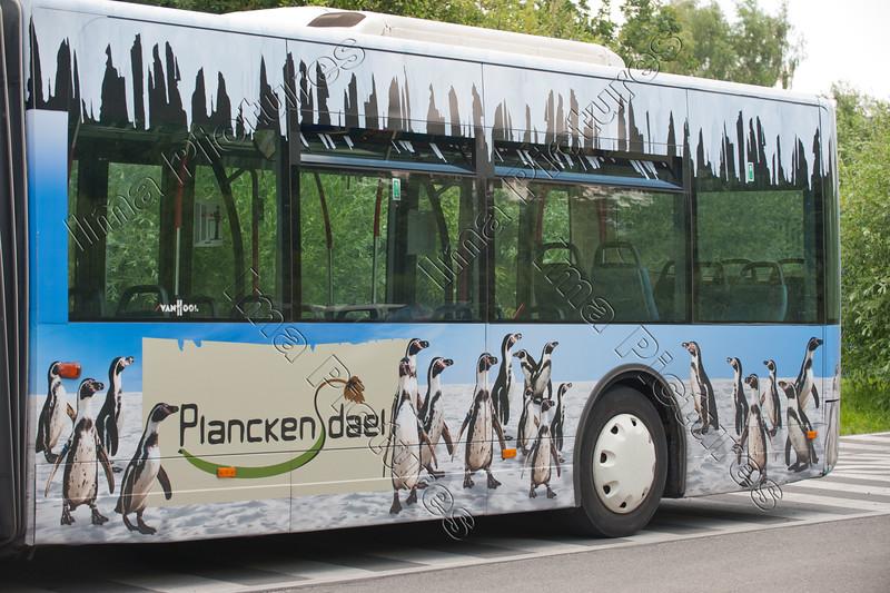 buses,bussen,bus