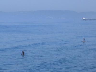 Surfing-2791