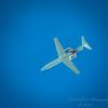 Kestrel,aircraft,StarlingBear,squirrel  (ambl,-)   2018-02-09-2090114