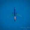 Kestrel,aircraft,StarlingBear,squirrel  (ambl,-)   2018-02-09-2090108