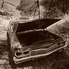 1973 Chevy wagon abandoned in Ruby, Arizona at the Mexican border.