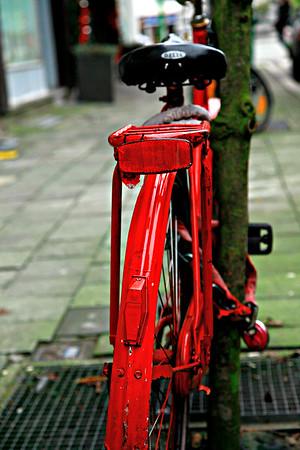 Call me Red Back. Antwerpen, Belgium.