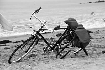 Wind in my Wheels.  Venice, CA.