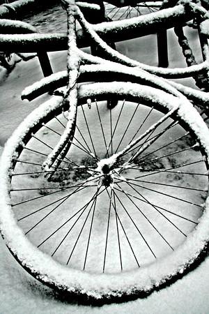 Cold & Left Behind.  Antwerpen, Belgium.