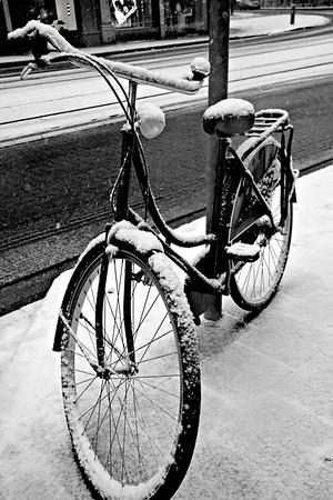 B&W Snow Season.  Antwerpen, Belgium.