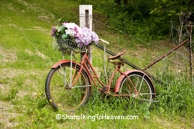 Old Fashioned Bicycle, Lafayette County, Wisconsin