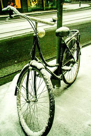 Snow season. Antwerpen, Belgium.
