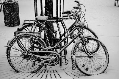Cover me White.  Antwerpen, Belgium.