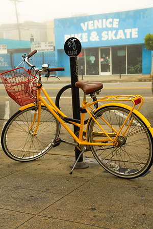 Yellow Mellow Rider. Venice, CA.