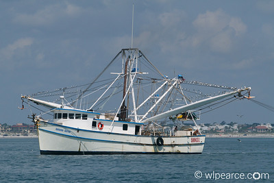 The Appalachee Warrior on the wrong side of Florida, off-shore St. Augustine. Get notifications via: