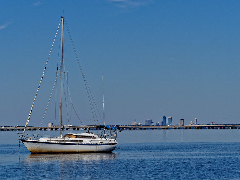 Sailboat on St. Johns River with the Buckman Bridge and Jacksonville skyline in the background