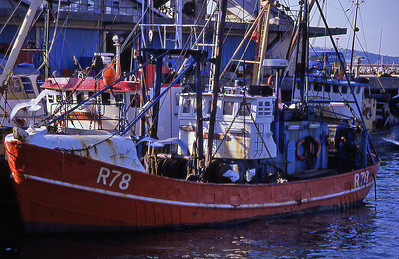 TrBoatFishCom1880600-29
