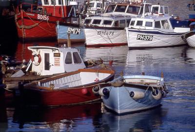 BoatFishCom FishCommercial