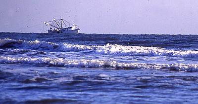 BoatFishCom BoatFishingCommercial