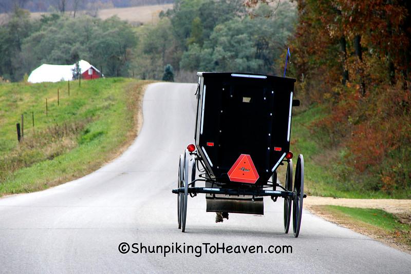 Amish Buggy, Sauk County, Wisconsin