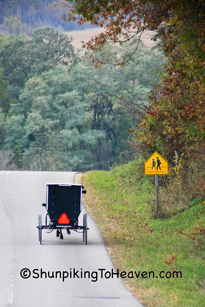 Amish Buggy in Autumn, Sauk County, Wisconsin