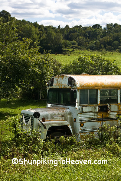 Old School Bus, Iowa County, Wisconsin