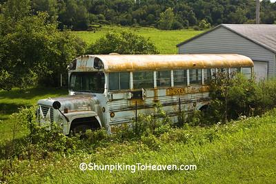 Old School Bus, Iowa County, Wisconsin