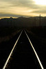 Sunlight reflecting on rails of tracks in desert.