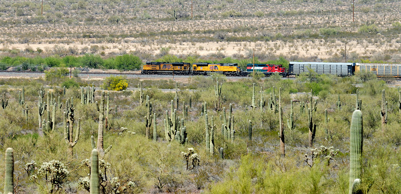Train travels through the heat of the Sonoran desert.