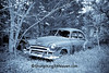 Rusty Old Chevrolet Car in Selenium Tone, Newton County, Arkansas