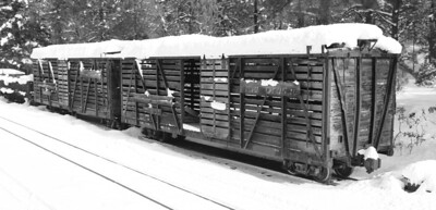 Some original Rio Grande cattle cars on the siding.