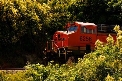 CAPTION: Train LOCATION: Boulevard Park, Bellingham, Washington DATE: 6-27-10 NOTES:  HEADING: