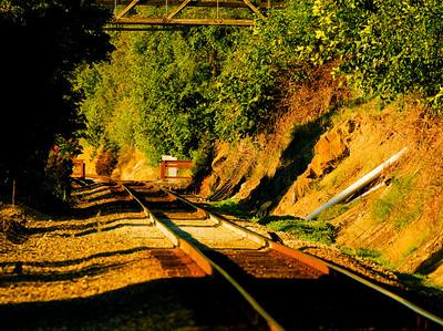CAPTION: Railroad Tracks LOCATION: Boulevard Park, Bellingham, Washington DATE: 7-11-10 NOTES: I photographed this railroad scene HEADING: