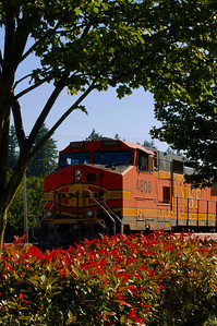 CAPTION: KTrain LOCATION: Fairhaven Marine Park, Bellingham, Washington DATE: 7-16-10 NOTES: Early evening freight train  HEADING: