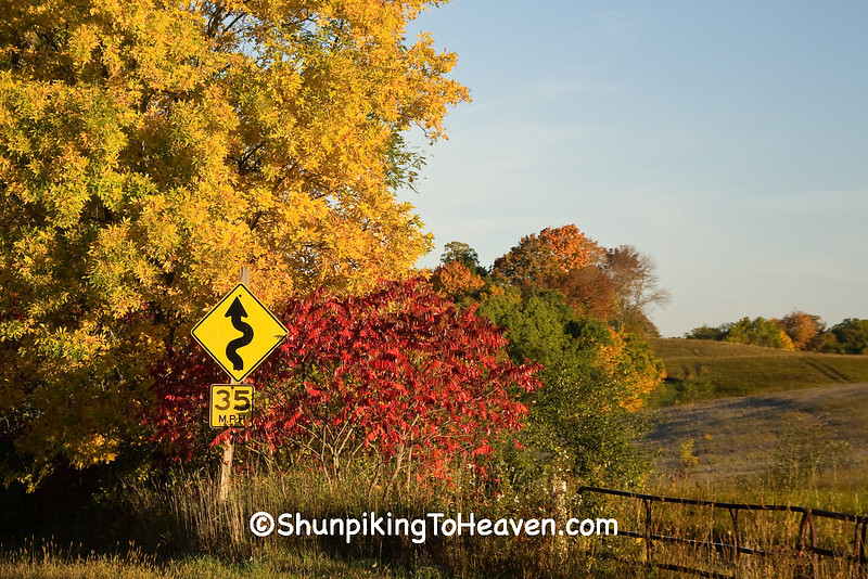 Squiggly Road Sign in Autumn, Richland County, Wisconsin