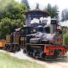 Roaring Camp Big Trees Railroad<br /> Henry Cowell Redwoods State Park, CA